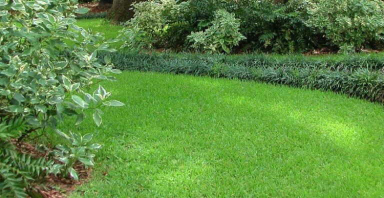 Lawn & Ornamental Fertilization